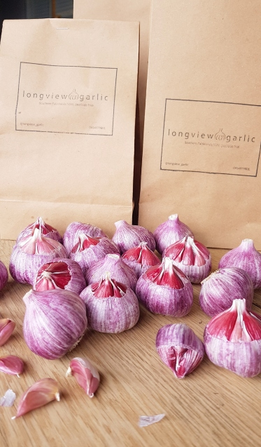 Fresh bulbs waiting to be packed and delivered