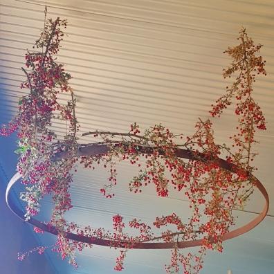 foraged hawthorn now adorning my ceiling