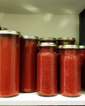 tomato stash starts